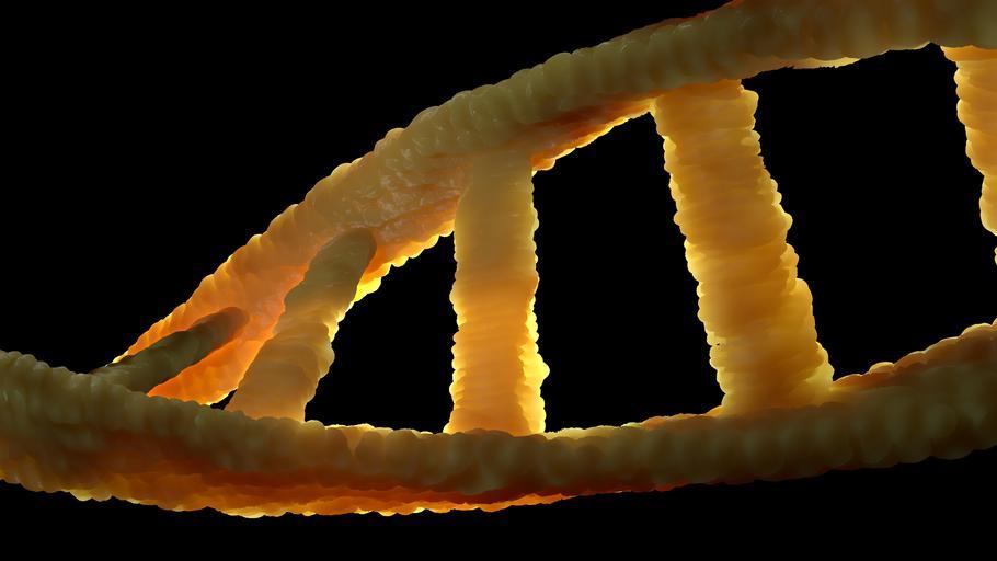 MOLECULAR BIOLOGY AND IMMUNOLOGY